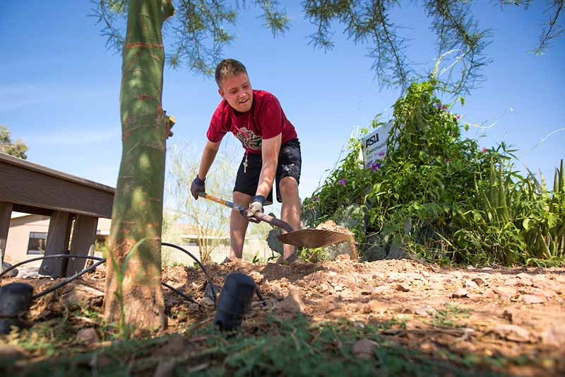 ASU student participating in a volunteer project for a day of service
