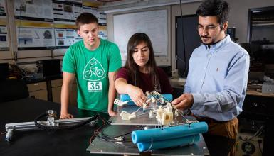 Your guide to undergraduate research