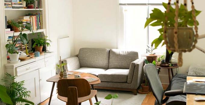 A pretty apartment with lighting, plants hanging and a gray couch